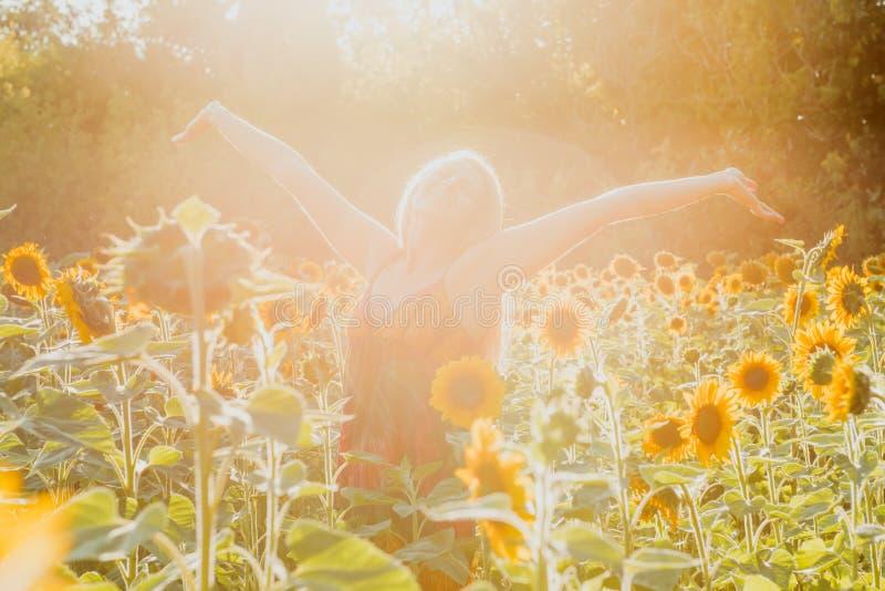 Piękno nasłoneczniona kobieta na żółtej słonecznika pola wolności i szczęścia pojęciu zdjęcie stock