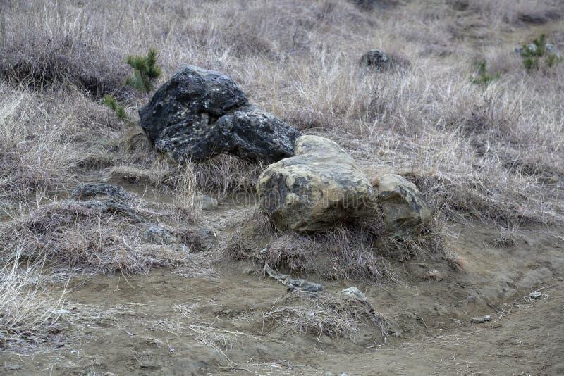 Piękno naturalny kamień fotografia stock