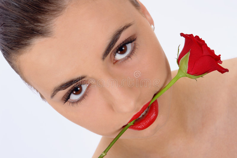 piękno odizolowane rose portret obraz stock