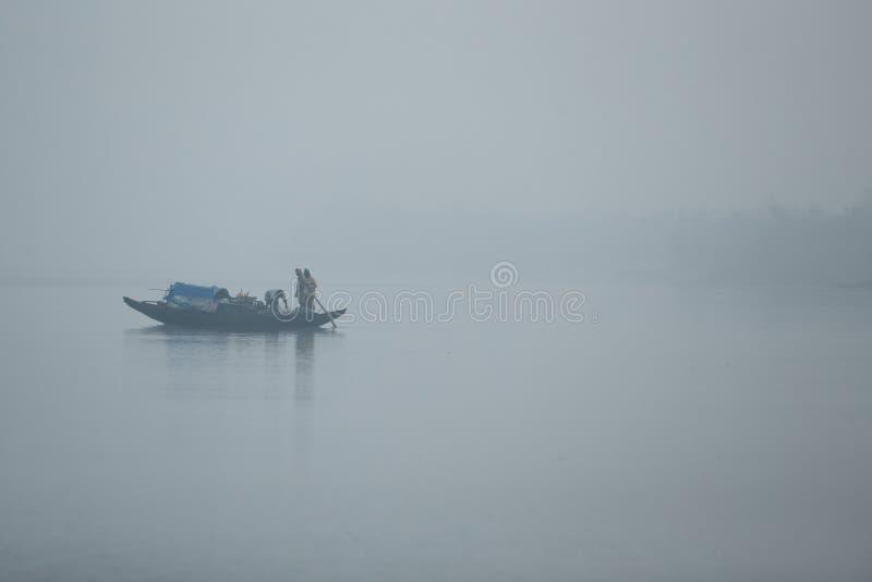 Piękno Sundarbans mangrowe w India zdjęcie royalty free