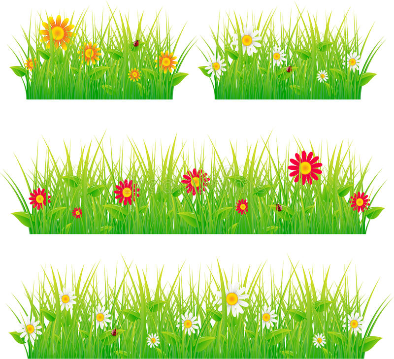 piękny łąkowy lato ilustracja wektor