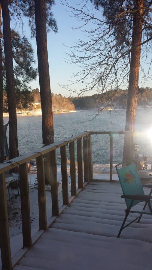 Piękny śnieżny jeziorny życie zdjęcia royalty free