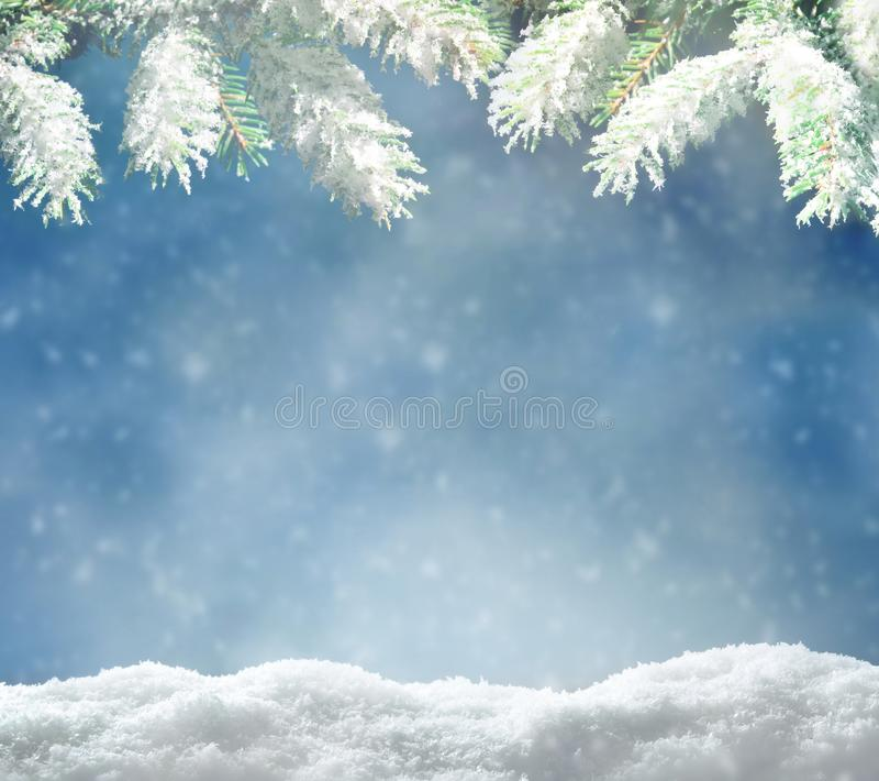 Piękny śnieżny krajobraz zimowy z śnieżną gałąź, płatkami śniegu i niebieskim niebem Tło zimowych świąt obrazy stock