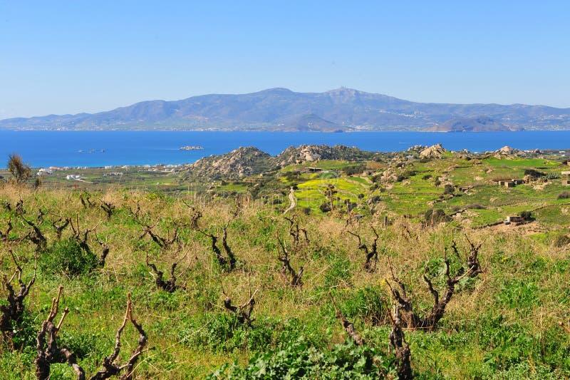 Piękny śródziemnomorski krajobraz, Naxos wyspa, Grecja zdjęcia royalty free