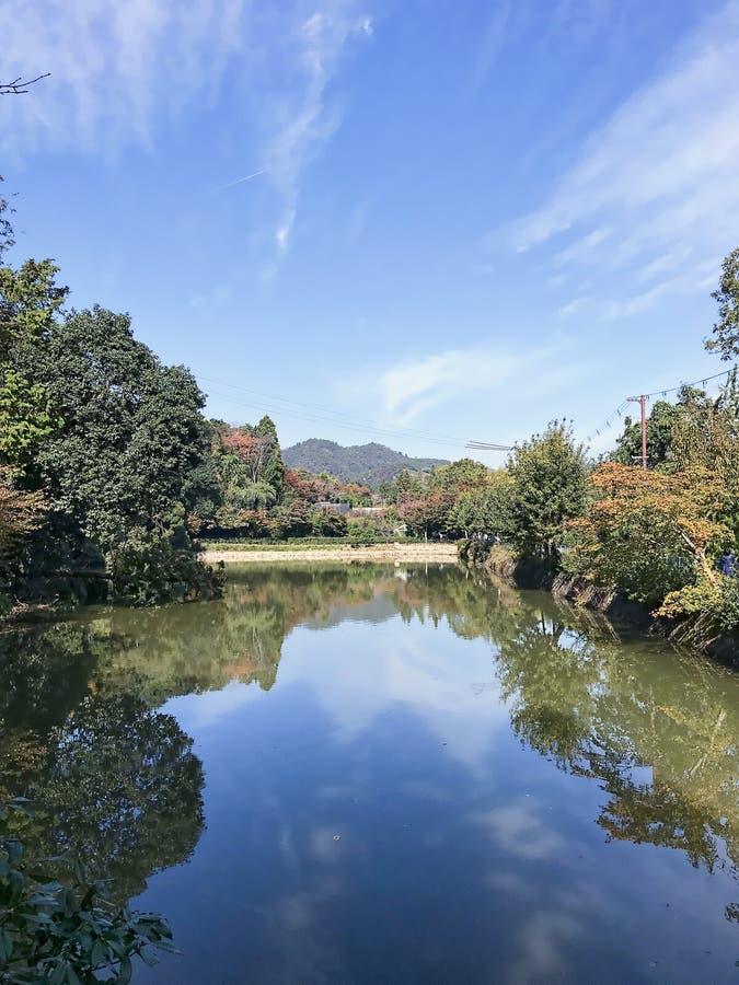 Piękny światło dzienne widok błękitny zieleń park i jezioro obrazy royalty free