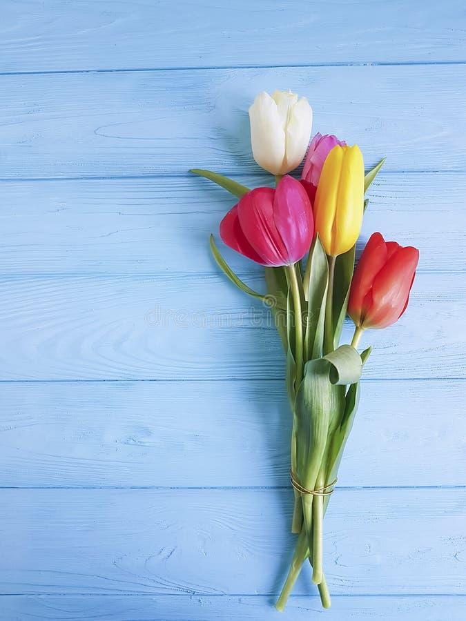 Piękny świeży piękno tulipanów lata świętowanie na drewnianym, miejsce dla teksta zdjęcia stock