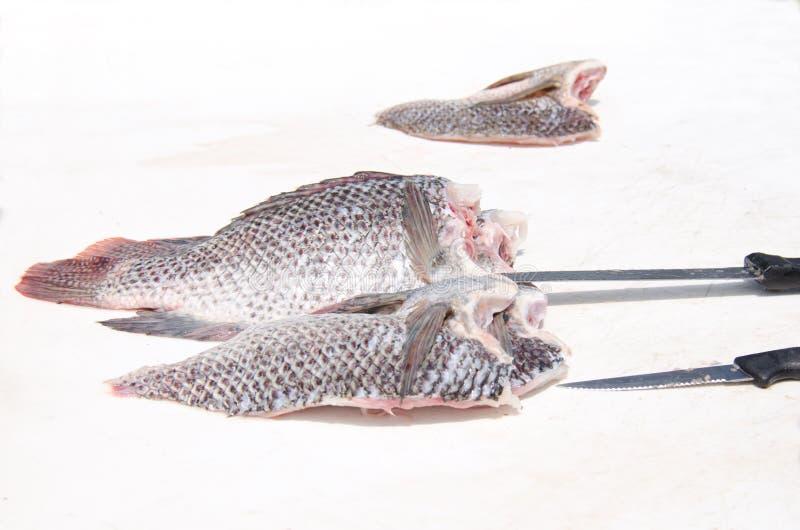 Świeży tilapia rybi przepasuje na rybim cleaning stole obraz royalty free