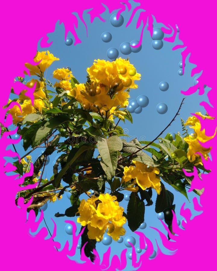 Piękny żółty kwiat l i pęcherzyki wektorowe tło ilustracji
