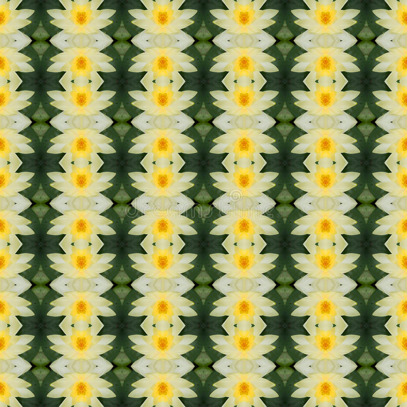 Piękny żółty lotos w pełnym kwiacie bezszwowym ilustracja wektor