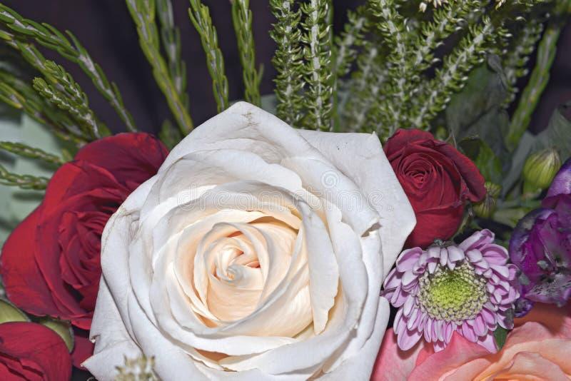 Piękny żywy bukiet mieszani kwiaty obraz royalty free