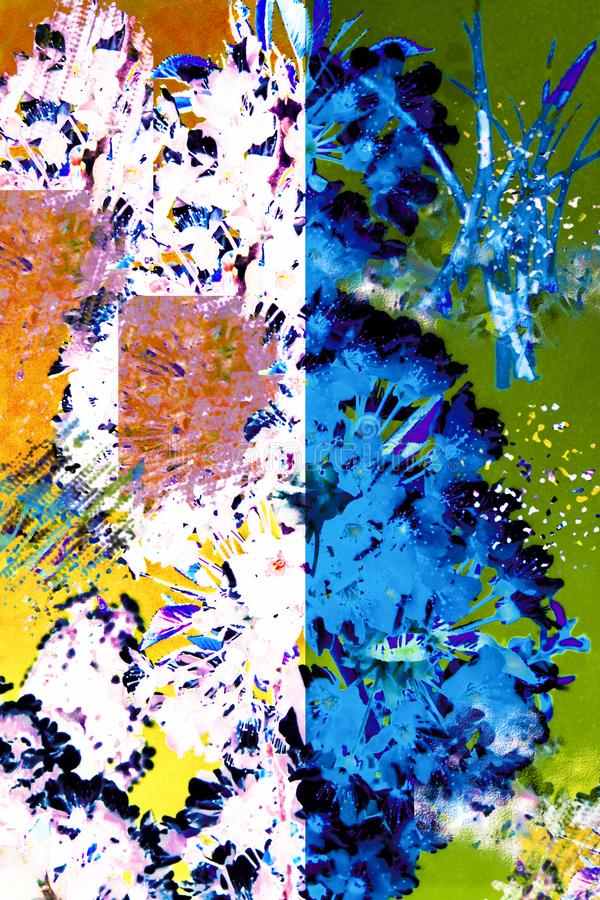 Piękny abstrakt barwiąca roślina zdjęcia royalty free