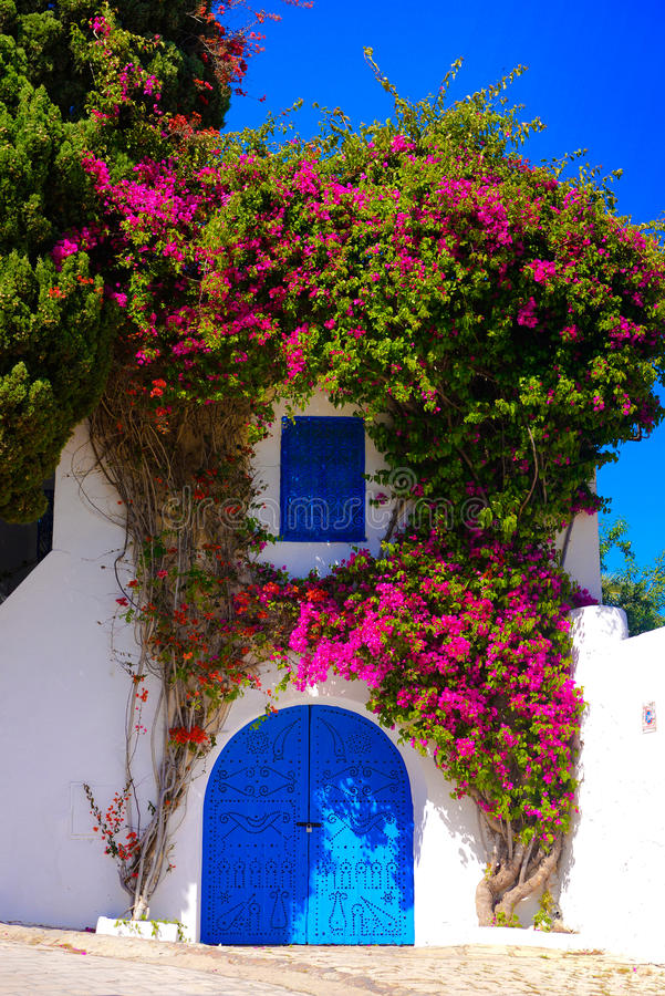 Piękny Arabski Błękitny drzwi - Sidi Bou Powiedział, Śródziemnomorska architektura obrazy royalty free