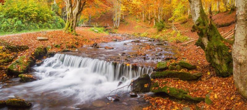 Piękny autmn landcape fotografia royalty free