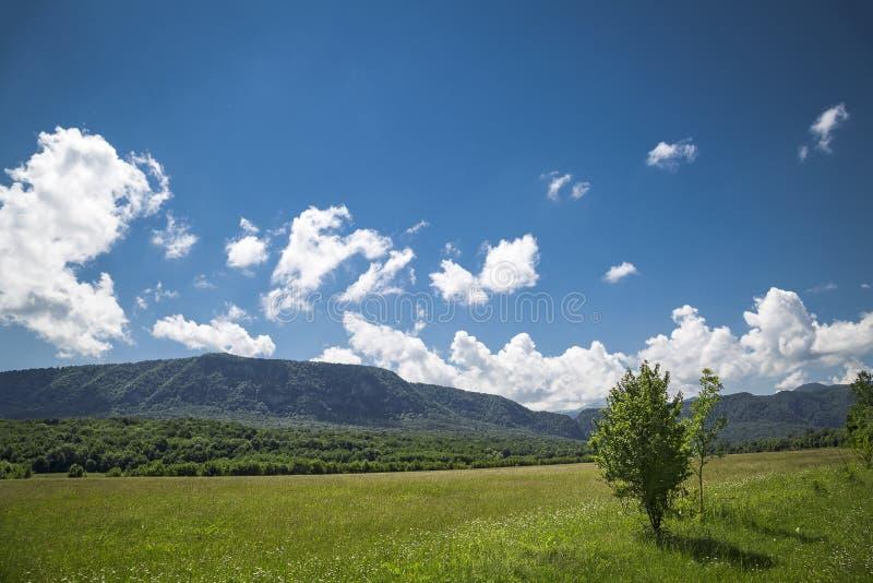 Piękny awanturniczy tło z drzewami i montains na stronie zdjęcie royalty free
