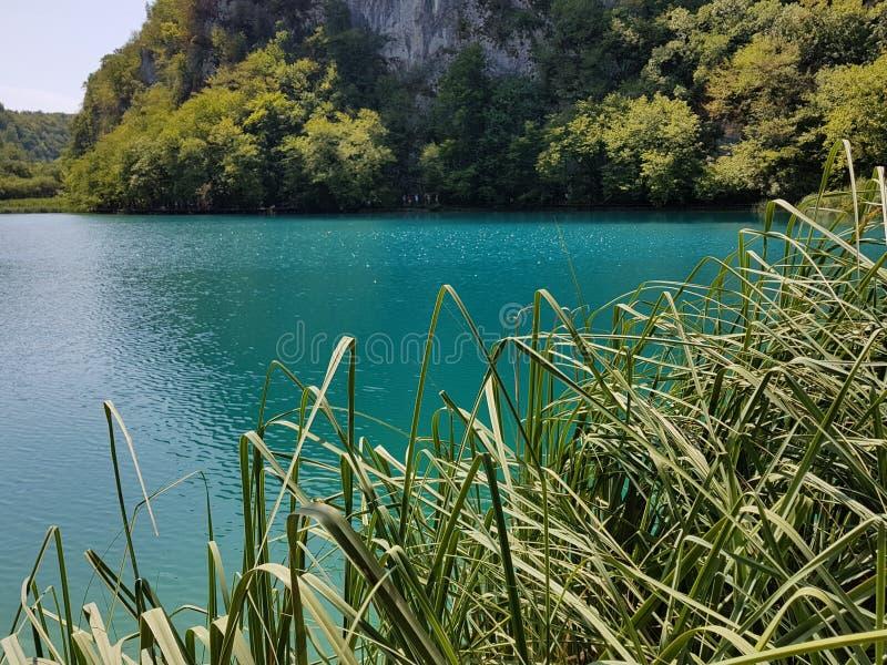 Piękny błękitny jezioro z widokiem gór Błękitny jezioro i zielona trawa na Plitvice jeziorach, Chorwacja obrazy royalty free