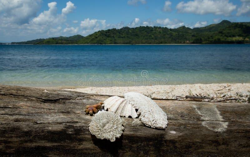 Piękny Błękitny ocean i biała piasek plaża fotografia royalty free