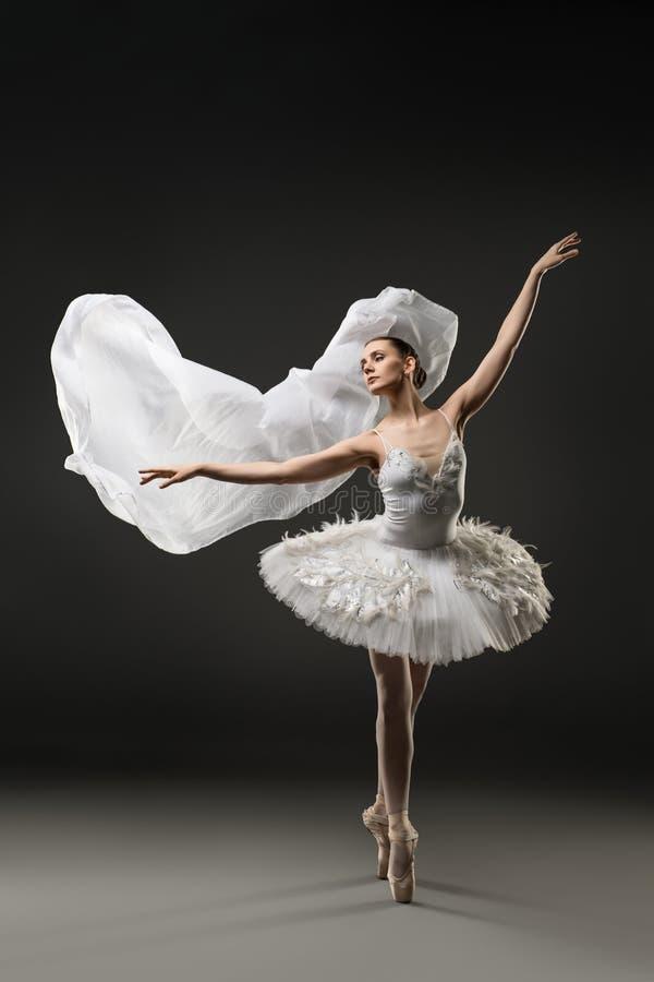 Piękny balerina taniec na pionte widoku fotografia stock