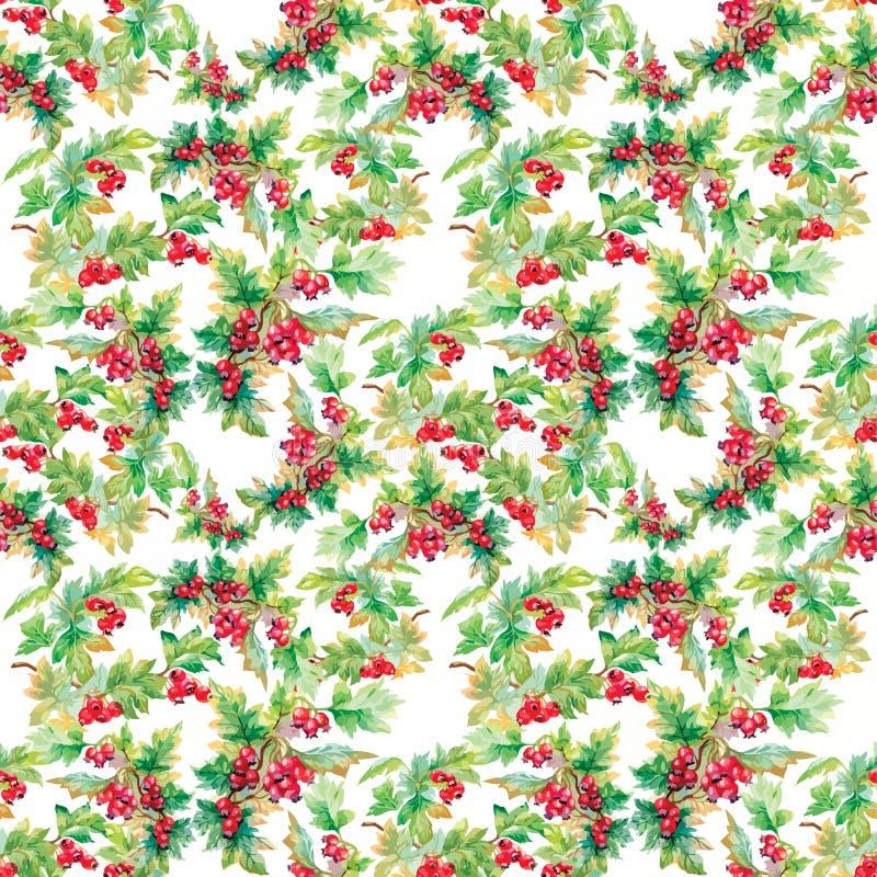 Piękny bezszwowy wzór w akwareli rozgałęzia się z rowan jagodami ilustracja wektor