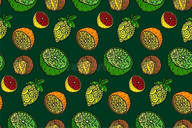 Piękny bezszwowy wzór z cytrus owoc ilustracji