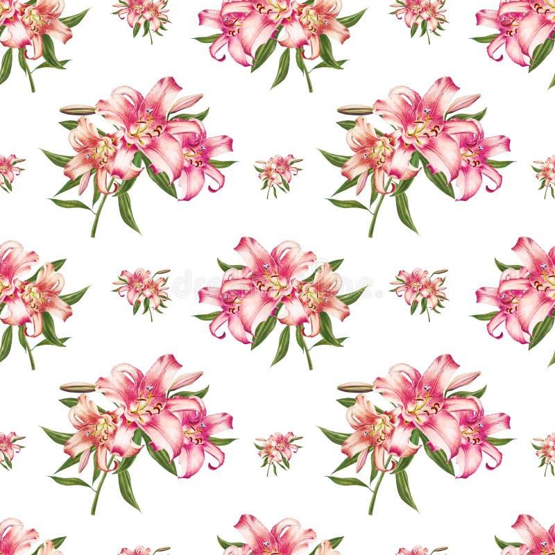 Piękny białej i różowej lelui bezszwowy wzór Bukiet kwiaty Kwiecisty druk Markiera rysunek ilustracji