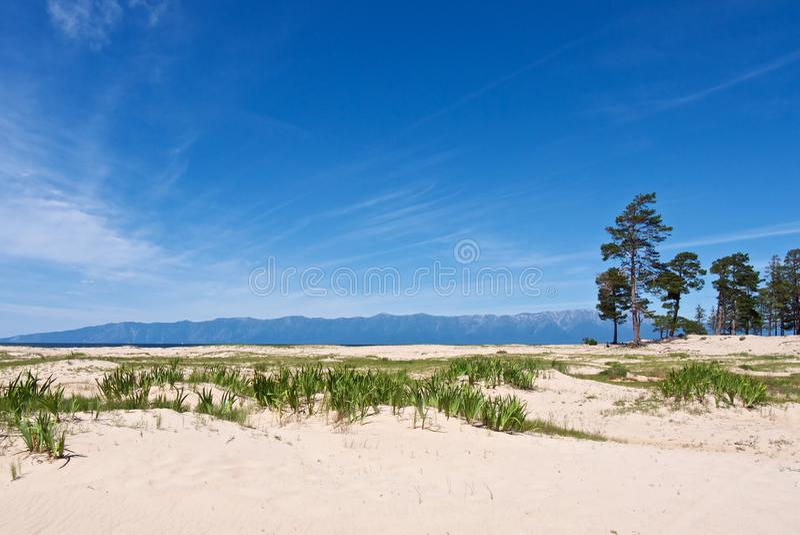 Piękny biały piaskowaty brzeg Jeziorny Baikal fotografia stock