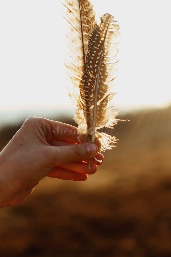 Piękny boho kobiety ręki mienie upierza w wieczór świetle słonecznym, fotografia stock