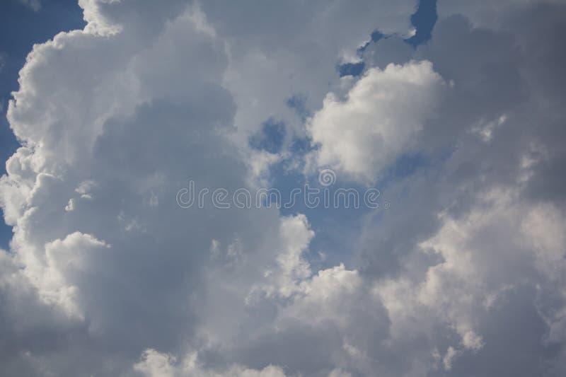 Piękny bujny chmurnieje przeciw niebieskiemu niebu zdjęcie royalty free