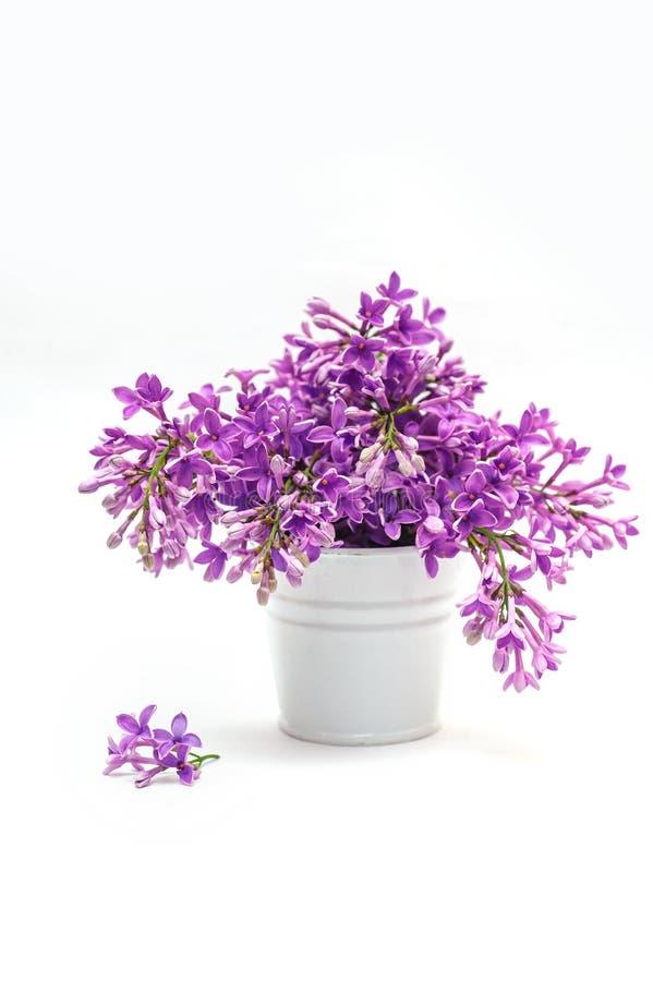 Piękny bukiet bez w dekoracyjnej wazie obrazy stock