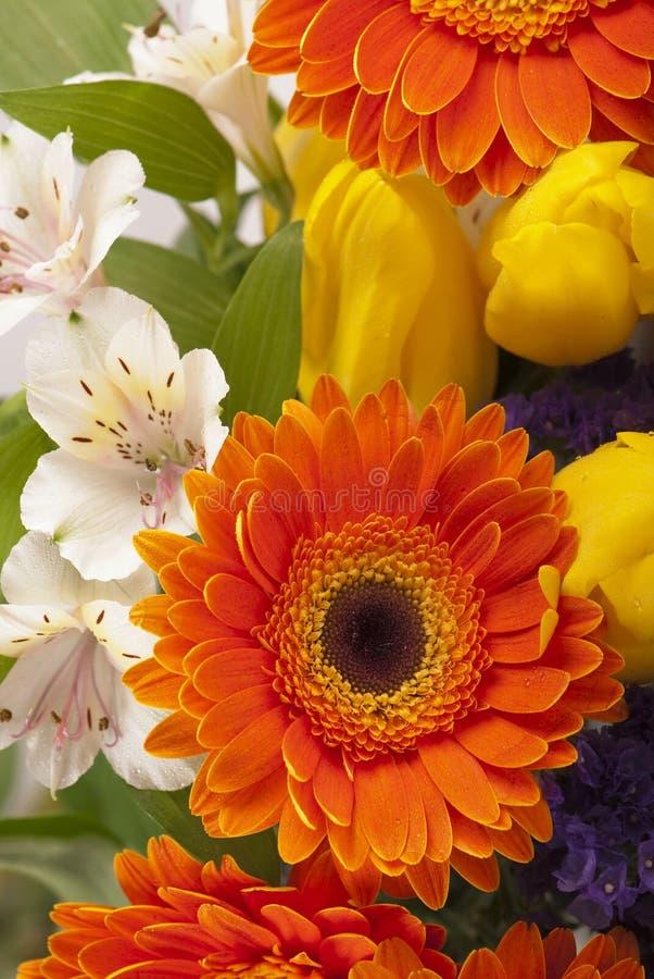 Piękny bukiet kolorowi wiosna kwiaty. obrazy stock