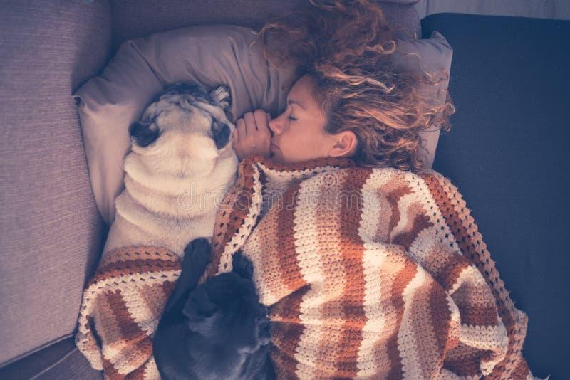 Piękny caucasian kobieta sen w zimie z dwa najlepszymi przyjaciółmi w domu jest prześladowanym mopsy wpólnie kłaść puszek z miłoś zdjęcia royalty free