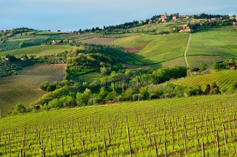 Piękny Chianti krajobraz, Tuscany obrazy stock