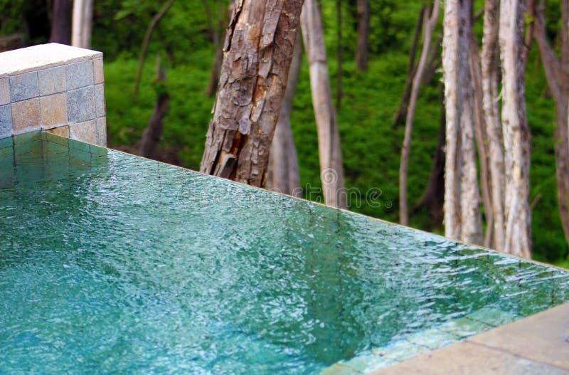 Piękny Costa Rican nieskończoności basen z dżunglą w tle obraz stock