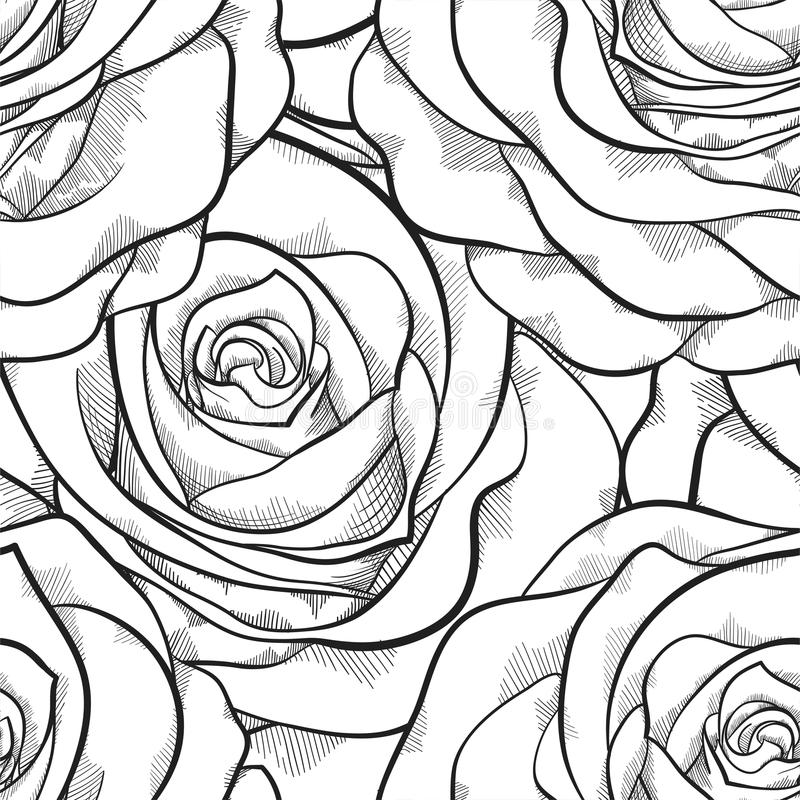 Piękny czarny i biały bezszwowy wzór w różach z konturami royalty ilustracja