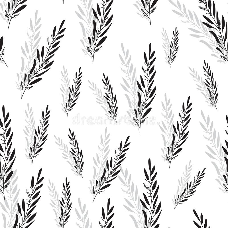 Piękny czarny i biały lawendowy niekończący się wzór ilustracyjny bezszwowy wektor pojedynczy bia?e t?o ilustracji