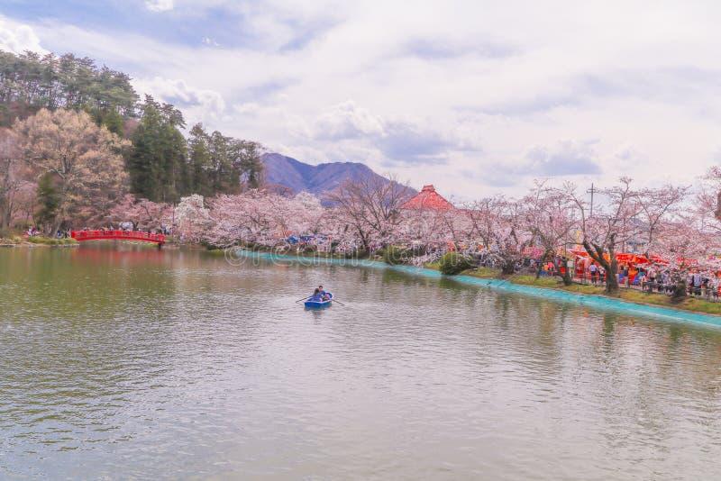 Piękny czereśniowego okwitnięcia Sakura festiwal, Nagano prefektura, Japonia obraz stock