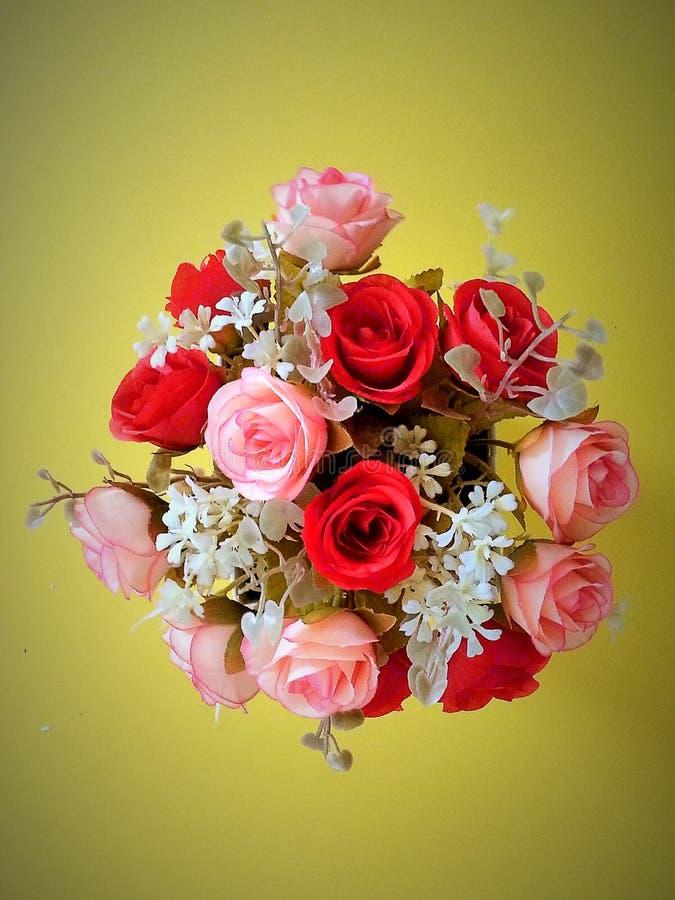 Piękny czerwieni i menchii róży bukiet obrazy royalty free