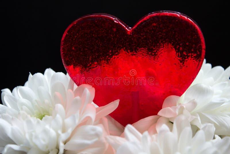 Piękny czerwony serce kształtował cukierek w białych kwiatach na czarnym tle zdjęcia royalty free