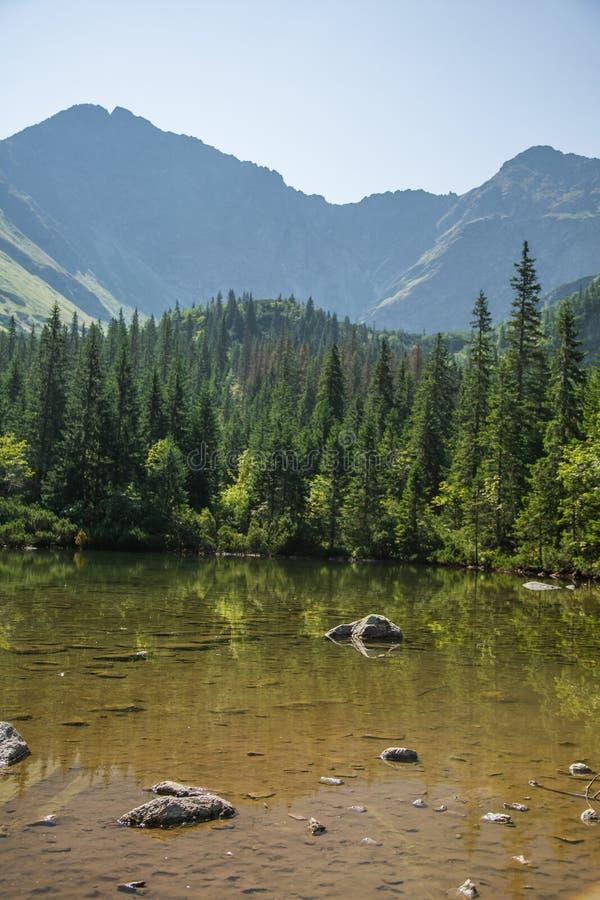 Piękny, czysty jezioro w halnej dolinie w spokoju, słoneczny dzień Góra krajobraz z wodą w lecie zdjęcie royalty free