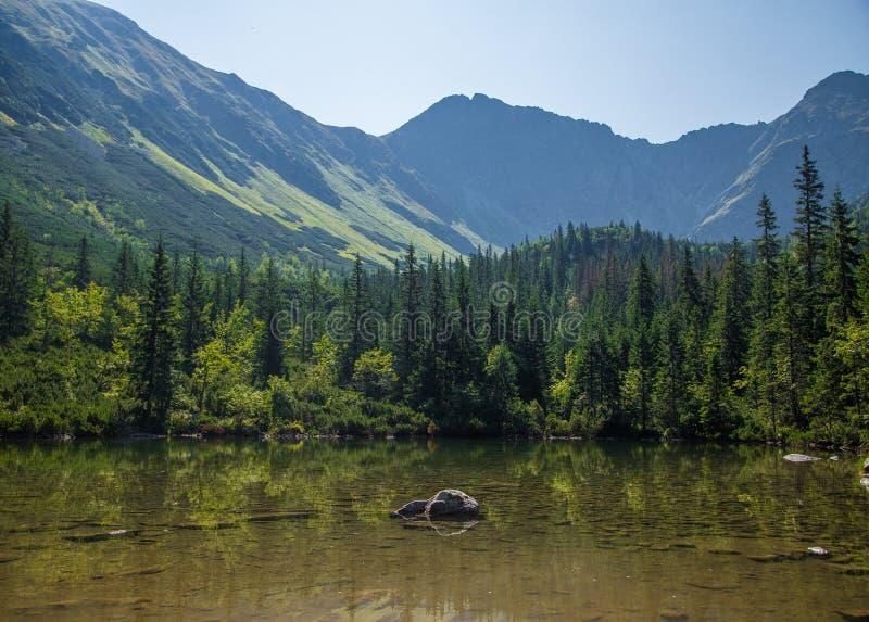 Piękny, czysty jezioro w halnej dolinie w spokoju, słoneczny dzień Góra krajobraz z wodą w lecie obrazy stock