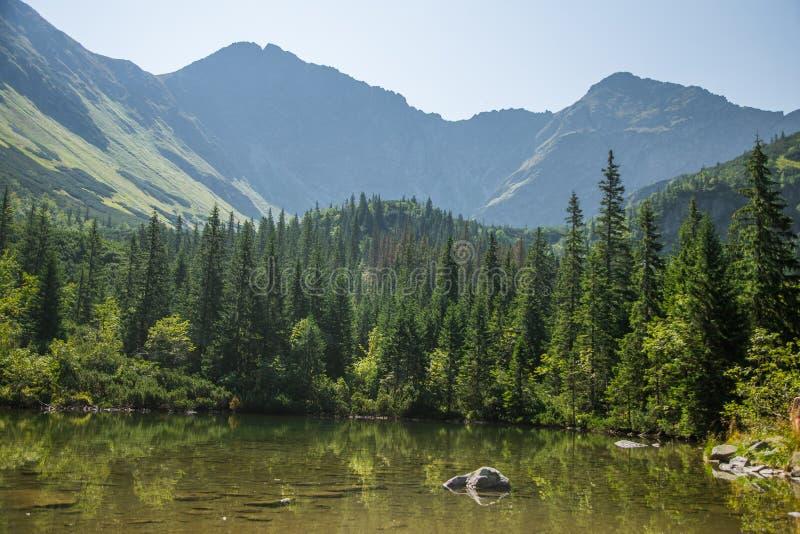 Piękny, czysty jezioro w halnej dolinie w spokoju, słoneczny dzień Góra krajobraz z wodą w lecie obrazy royalty free