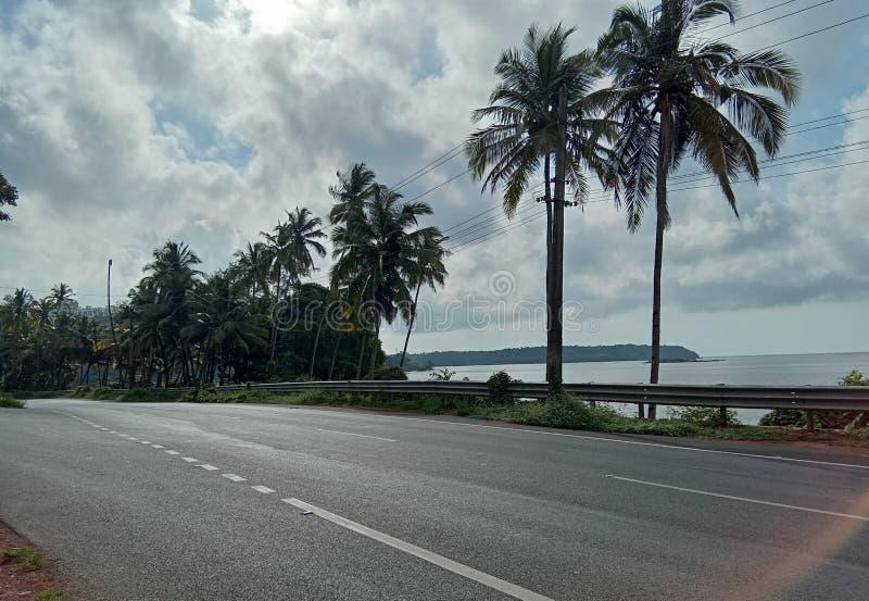 Piękny denny brzeg z kokosowym drzewem fotografia stock
