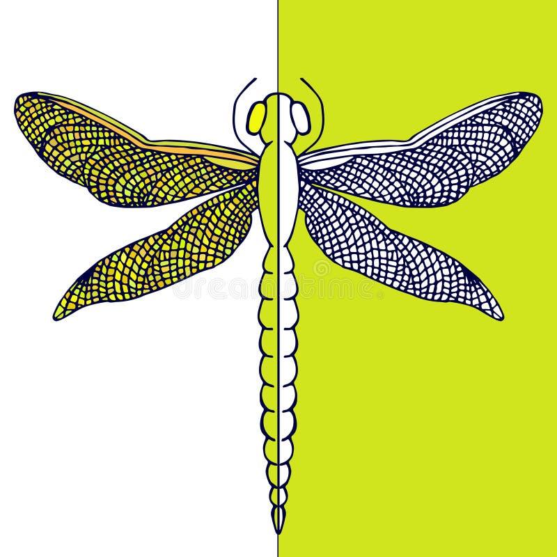 Piękny dragonfly z kolorowymi skrzydłami Kontrast karta remisu ręki papieru watercolours royalty ilustracja