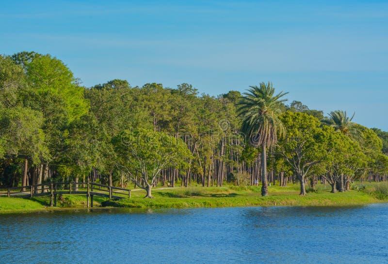 Piękny dzień dla spaceru i widoku wyspa przy John S drewniany most Taylor park w Largo, Floryda obraz royalty free
