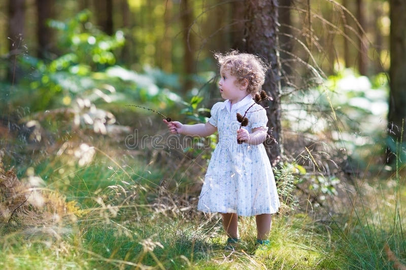 Piękny dziewczynki odprowadzenie w pogodnym jesień parku obrazy stock