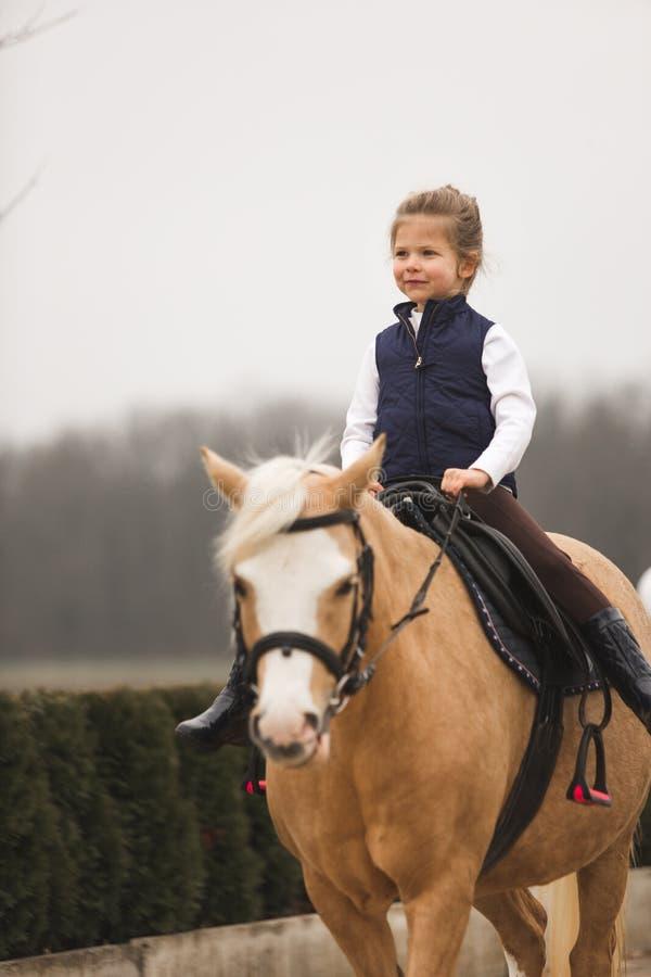 Piękny dziewczyny przejażdżki koń w gospodarstwie rolnym Park na tle zdjęcia royalty free