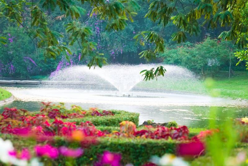 Piękny, ekspansywny, kwiecisty ogródu park z aktywną stawową fontanną ustawiającą w tle, obraz stock