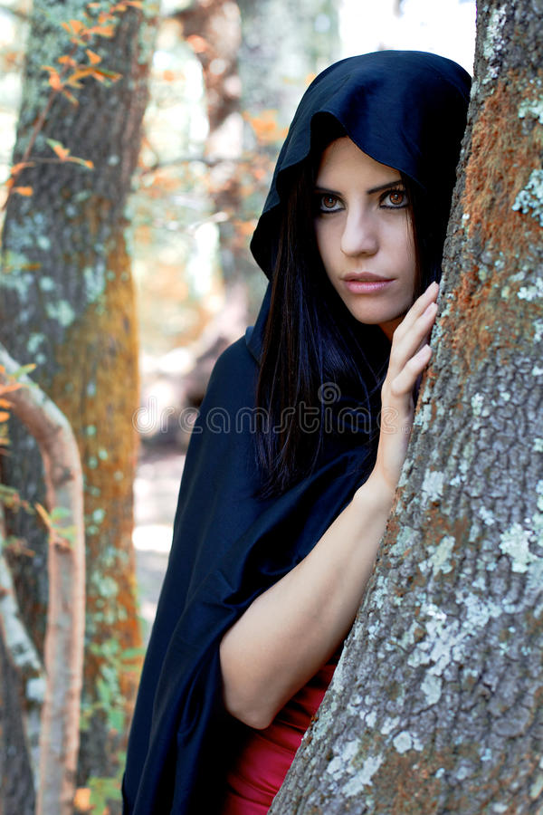 Piękny fantazi kobiety dowcipu czerni kapiszon w drewnach fotografia royalty free