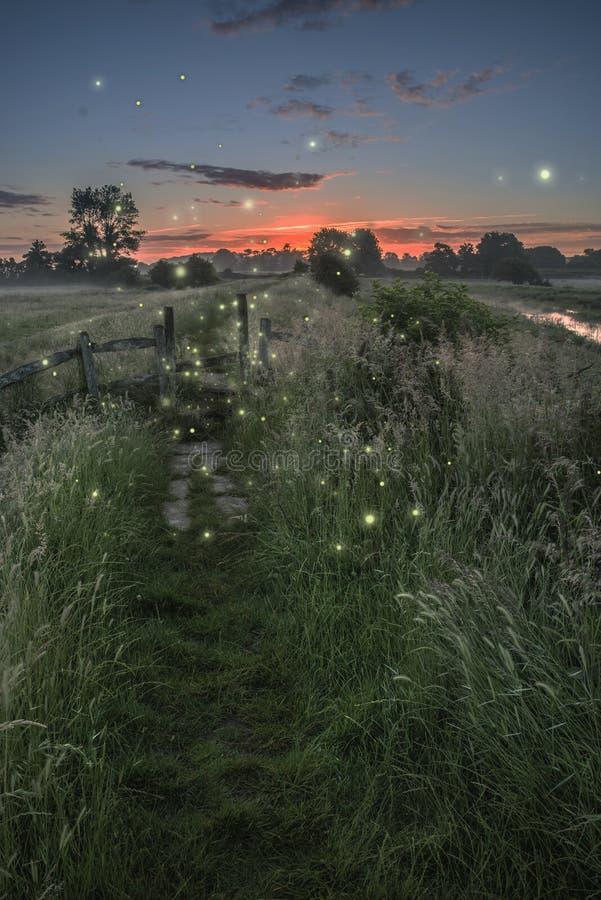 Piękny fantazja obrazek świetliki przy półmrokiem nad rzecznym landsc zdjęcie stock