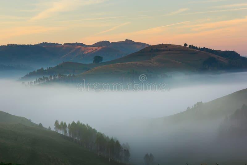 Piękny góra krajobraz mgłowy ranek z kolorowym niebem i drzewami fotografia stock