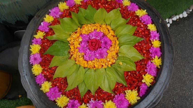 Piękny garnek kwiaty dla wspaniałego boga i ludzi obrazy stock